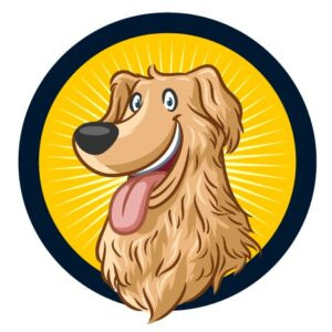 Dog Online Training – קורס אילוף הכלבים הדיגיטלי הכי מקיף בארץ